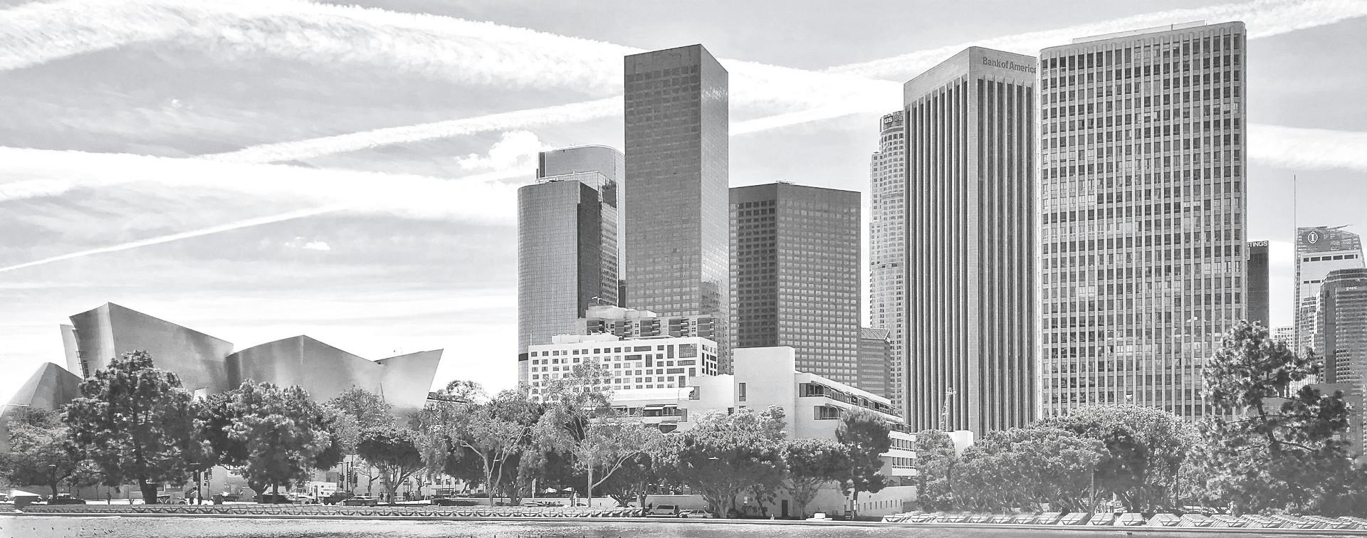 Progetti internazionali: Los Angeles
